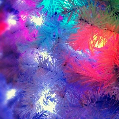 クリスマスまであと13日!